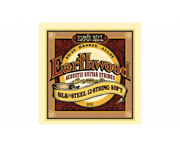 ERNIE BALL - 2153 EARTHWOOD PHOSPHORE BRONZE 12 STRING LIGHT