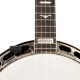 PLANET WAVES - NS MICRO POUR BANJO