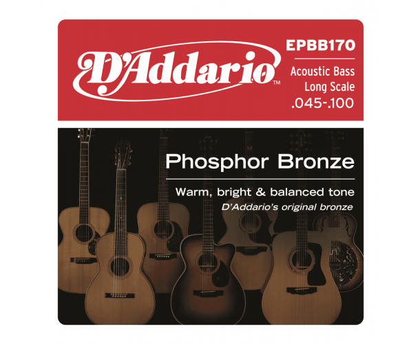 D'ADDARIO - EPBB170 CORDES GUITARE BASSE LIGHT LONG SCALE