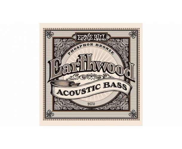Earthwood basse acoustique