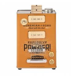 BOHEMIAN TNT - ELECTRIC GUITAR - 2 X P90