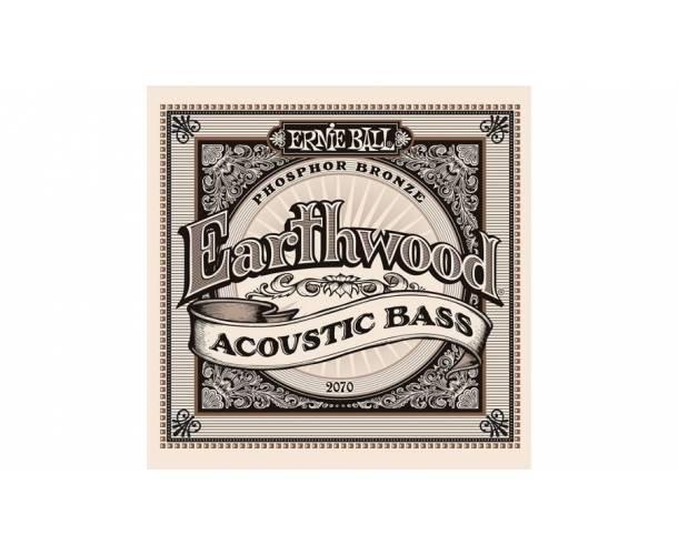 Earthwood basse acoustique